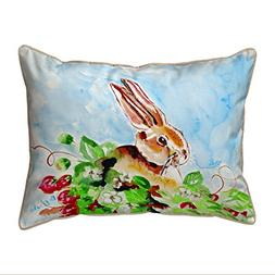 Betsy Drake Polyester Patio Furniture Pillows Jack Rabbit Le